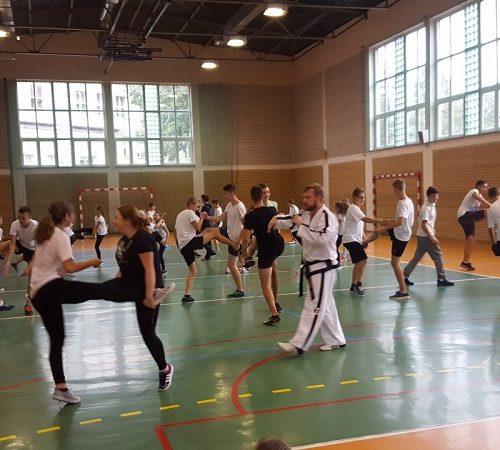 taekwondo (3)zm