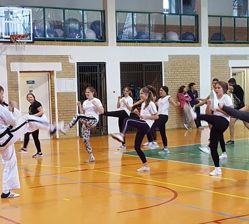 taekwondo zm