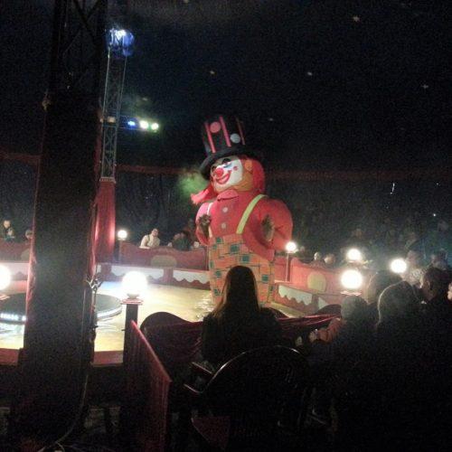 z wizytą w cyrku (2)zm
