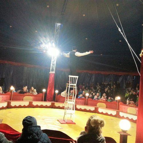 z wizytą w cyrku (4)zm