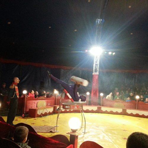z wizytą w cyrku (5)zm