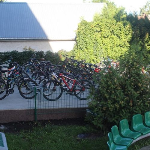 rowery (1)zm
