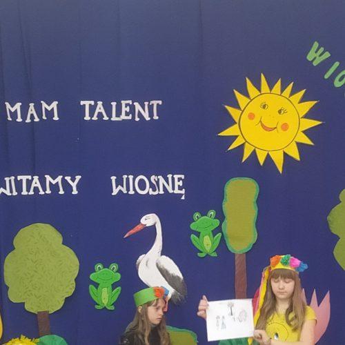 Pokaz talentów w SF Sochonie